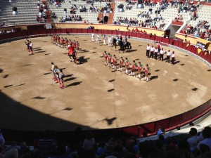 The introduction of the two bullfighting teams is accompanied by music and fanfare. In years past, prominent fado singers performed at bullfights.