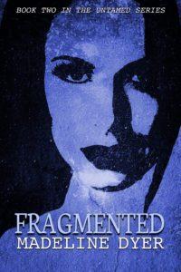 fragmented1400-200x300